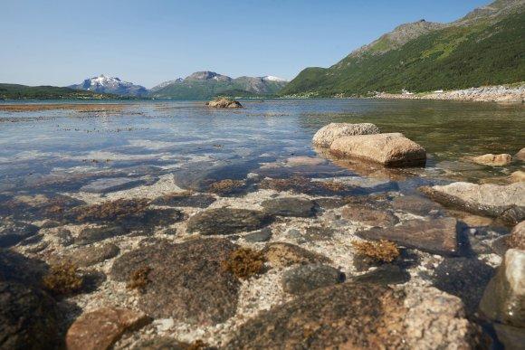 Норвежские фьорды с чистой водой