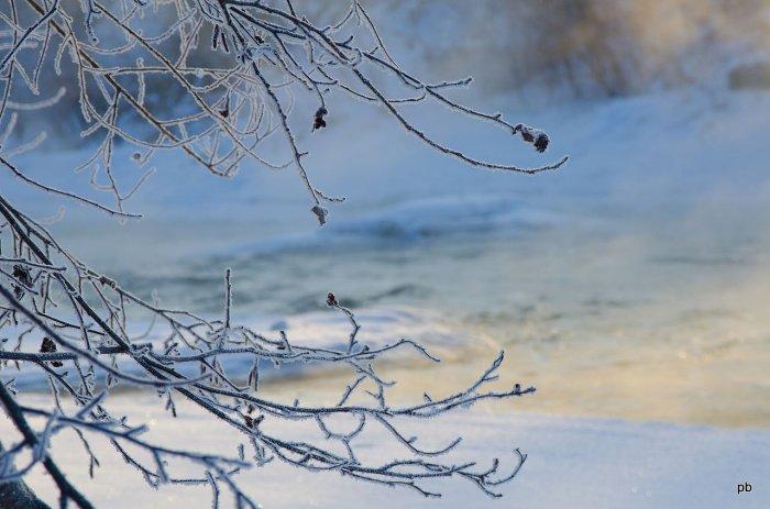 Подкумок зимой