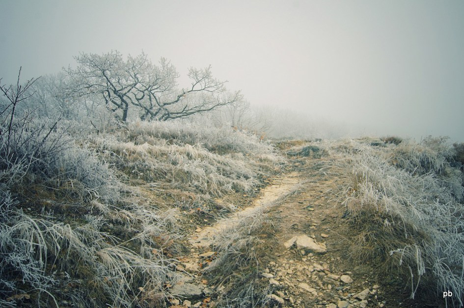 Туман и иней на Машуке