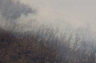 Пожар на Машуке