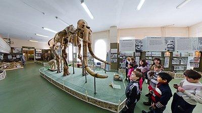Ставропольский музей