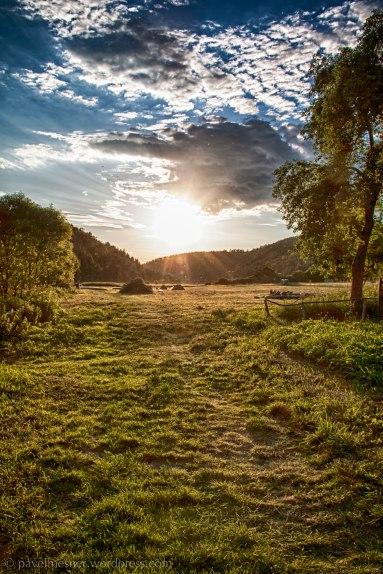 Nádherný letní večer v údolí řeky Berounky (Rakolusky | červen 2012)