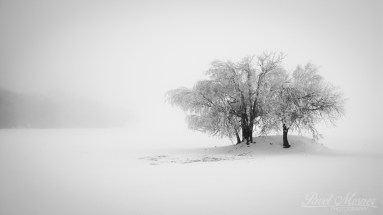White silence (Podstrání | únor 2015)
