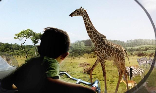 Deca, posetioci - zajedno u saglasju sa životinjama
