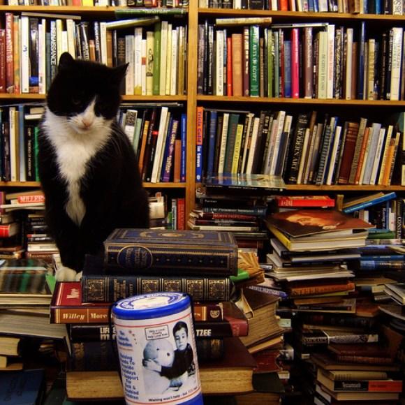 Nezavisne knjižare - odraz želje za različitošću