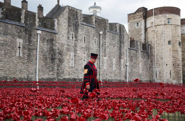 "Yeoman Serjeant Bob Loughlin walks amongst the art installation ""Blood Swept Lands and Seas of Red"" marking the anniversary of the World War One at the Tower of London"