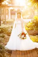 Photography Wedding vendors