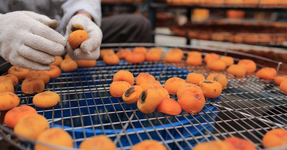 新埔柿餅攝影小旅行, 客家粄條好好味