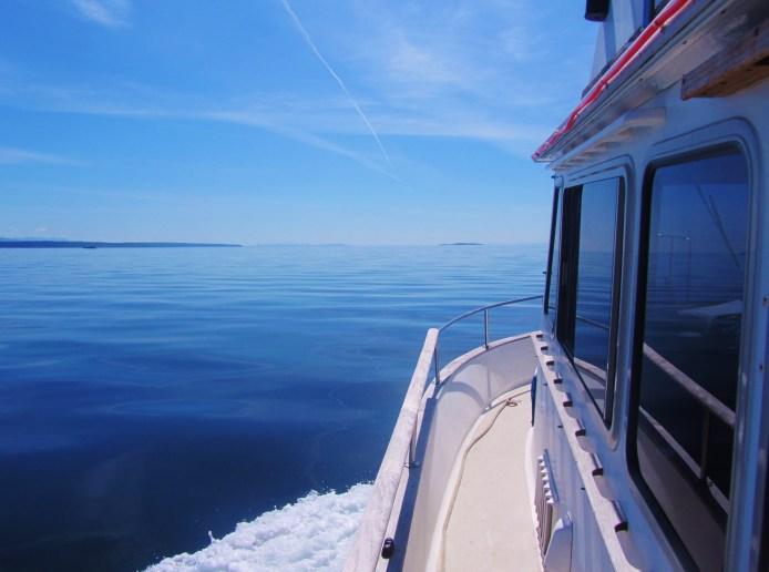 Port side look ahead