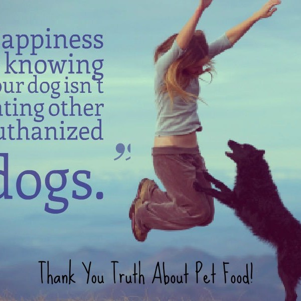 The Truth About Pet Food Research