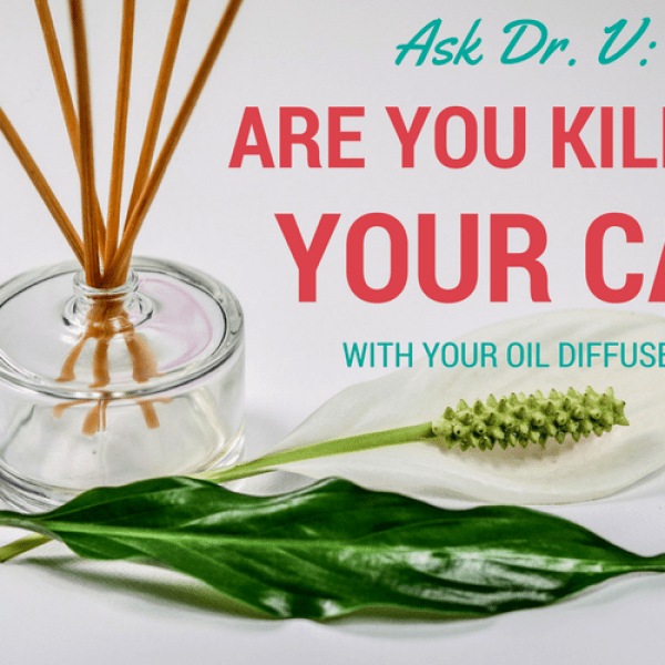 Are You Killing Your Cat With Essential Oil Diffusers?