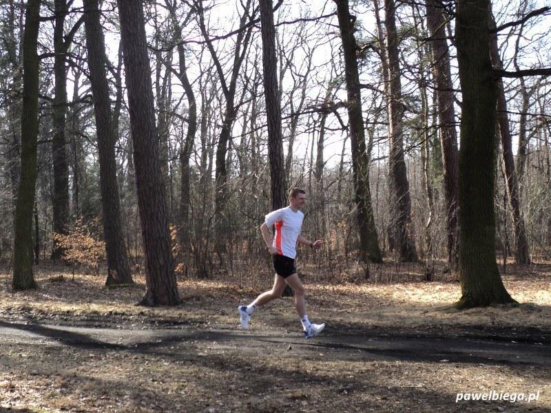 Bieg po lesie