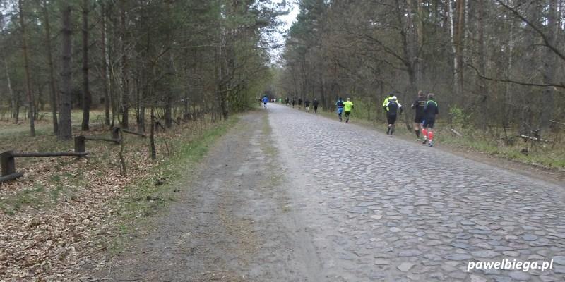 Bieg Łosia 2015 - trasa
