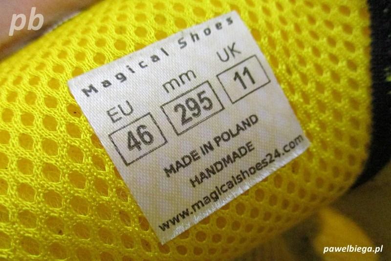 MS Receptor Explorer - Made In Poland