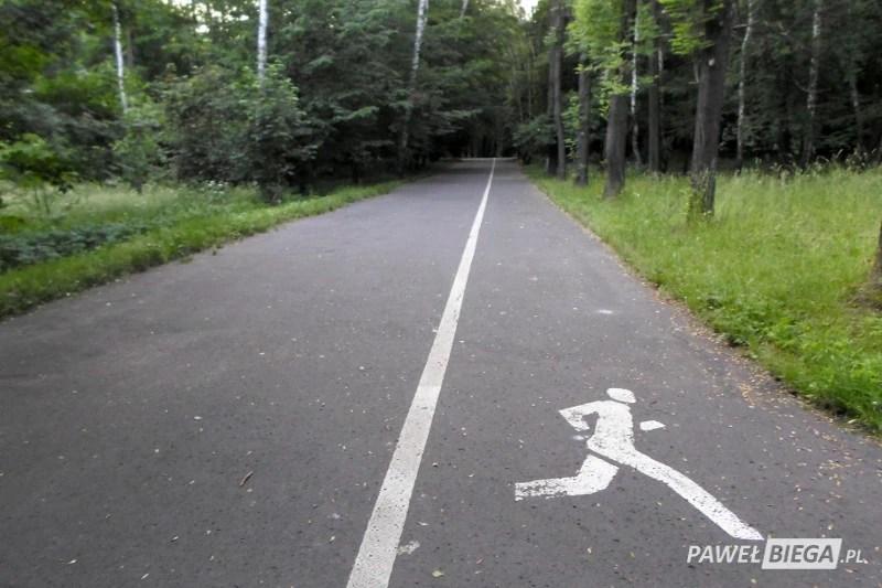 Park Śląski - ścieżka biegowa