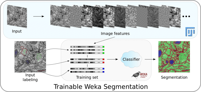 Trainable Weka Segmentation pipeline overview