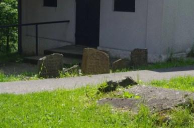 cmentarz żydowski w rymanowie na podkarpaciu, widoczne macewy