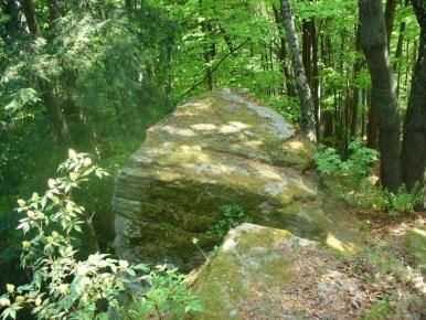 diabelski kamień w beskidzie makowskim w okolicy kotonia