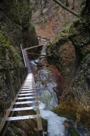 horne diery, jeden z wąwozów prowadzących przez szlak w małej fatrze na słowacji, widoczna jedna z drabinek