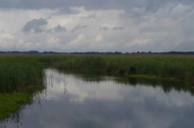 rezerwat przyrody unesco man and biosphere jezioro łuknajno na mazurach