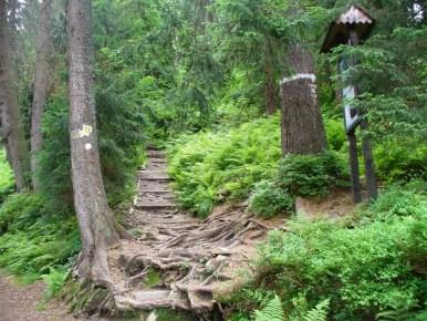 perć akademików, początek szlaku przy skręcie ratowników, babiogórski park narodowy