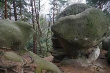 skamieniałe miasto koło ciężkowic w małopolsce, widoczne formy skalne