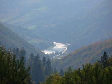 widok na dolinę dunajca spod dzwonkówki w beskidzie sądeckim