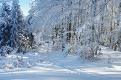 zima pod luboniem wielkim w beskidzie wyspowym, początek szlaku do glisnego