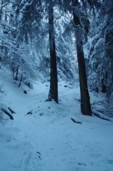 oblodzony zimowy szlak z lubonia wielkiego na przełęcz glisne w beskidzie wyspowym