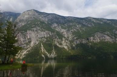 jezioro bohinj w alpach julijskich w słowenii