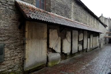 kamienne mogiły w pobliżu klasztoru dominikanów w tallinie w estonii