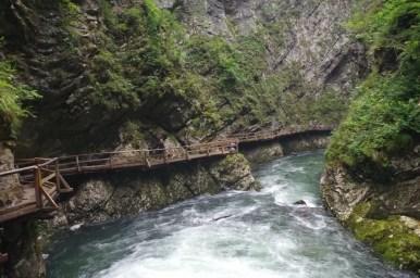 wąwóz vintgar w alpach julijskich w słowenii