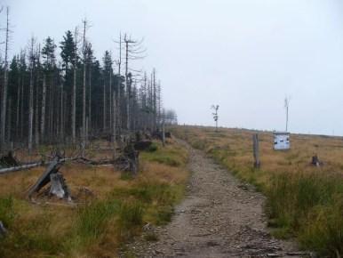 szlak z baraniej góry na magurkę wiślańską w beskidzie śląskim