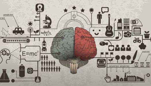 Mózg, najlepszy sprzedawca