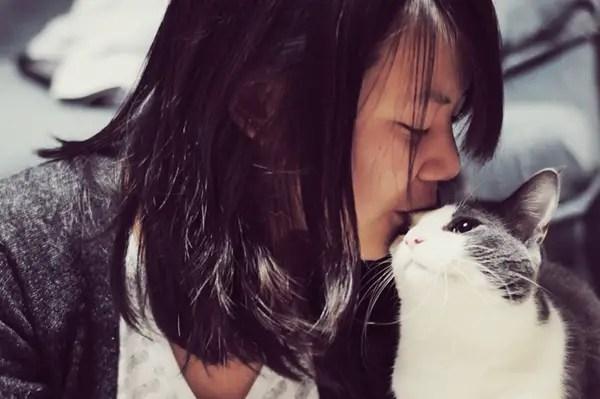 Cat bunting human