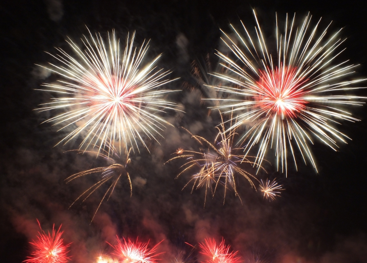 Keep your pets inside and safe during fireworks and NYE celebrations   Summer Safety for Cats: Fireworks and New Year Celebrations