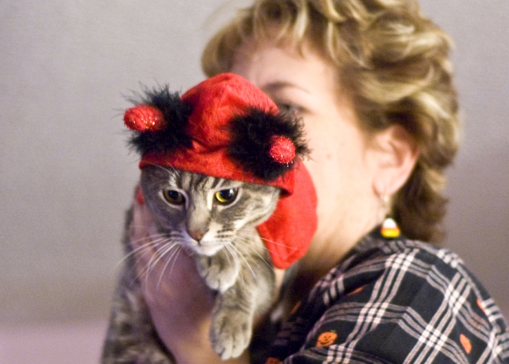 woman holding a tabby cat who is dressed as a devil for halloween