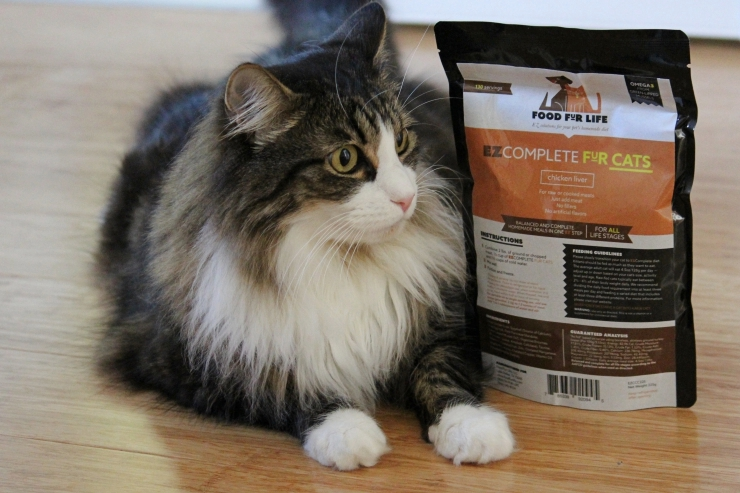 brown and white tabby cat sits alongside packet of EZComplete raw cat food premix