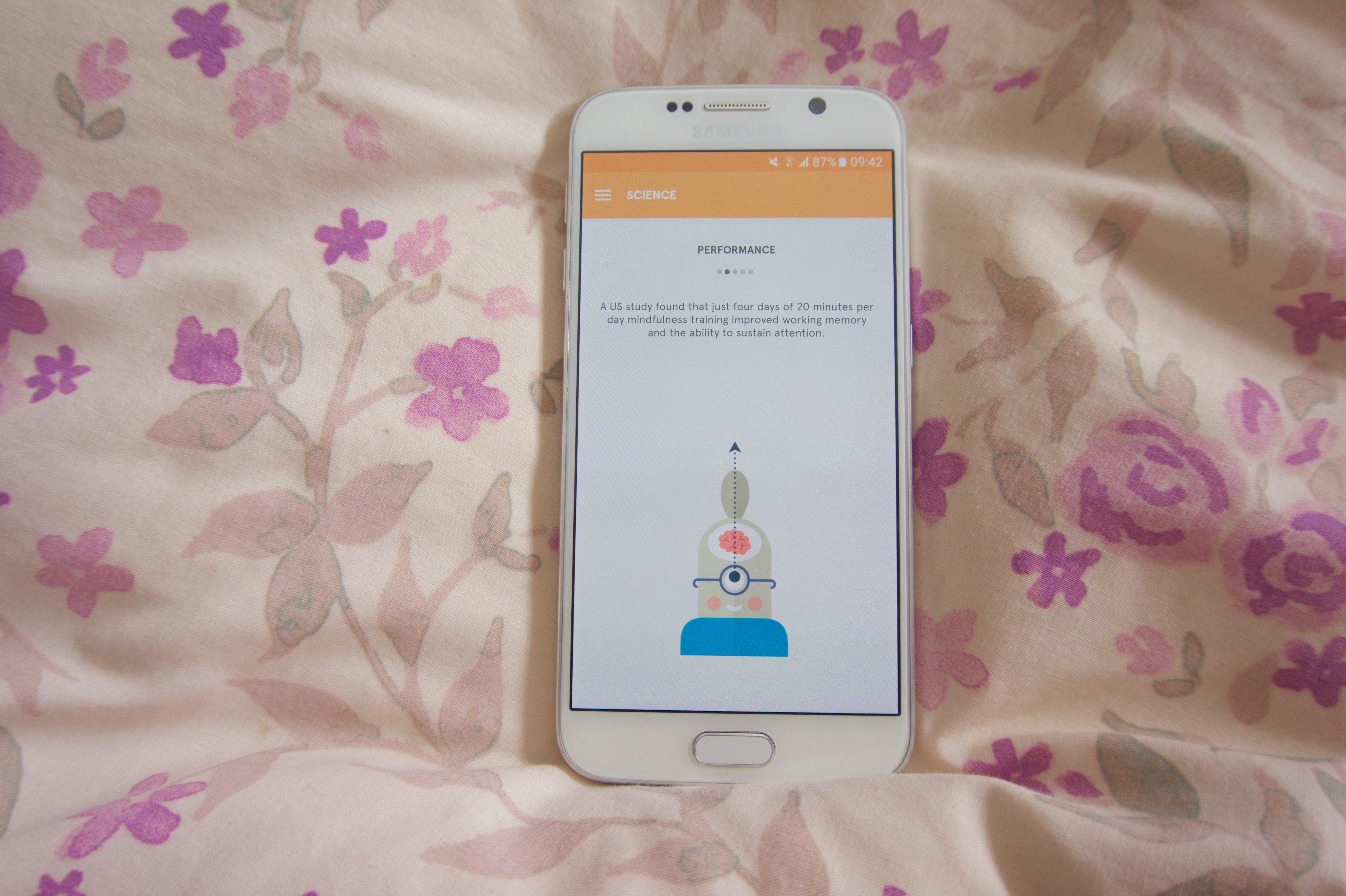Headspace App on my Samsung Galaxy S6