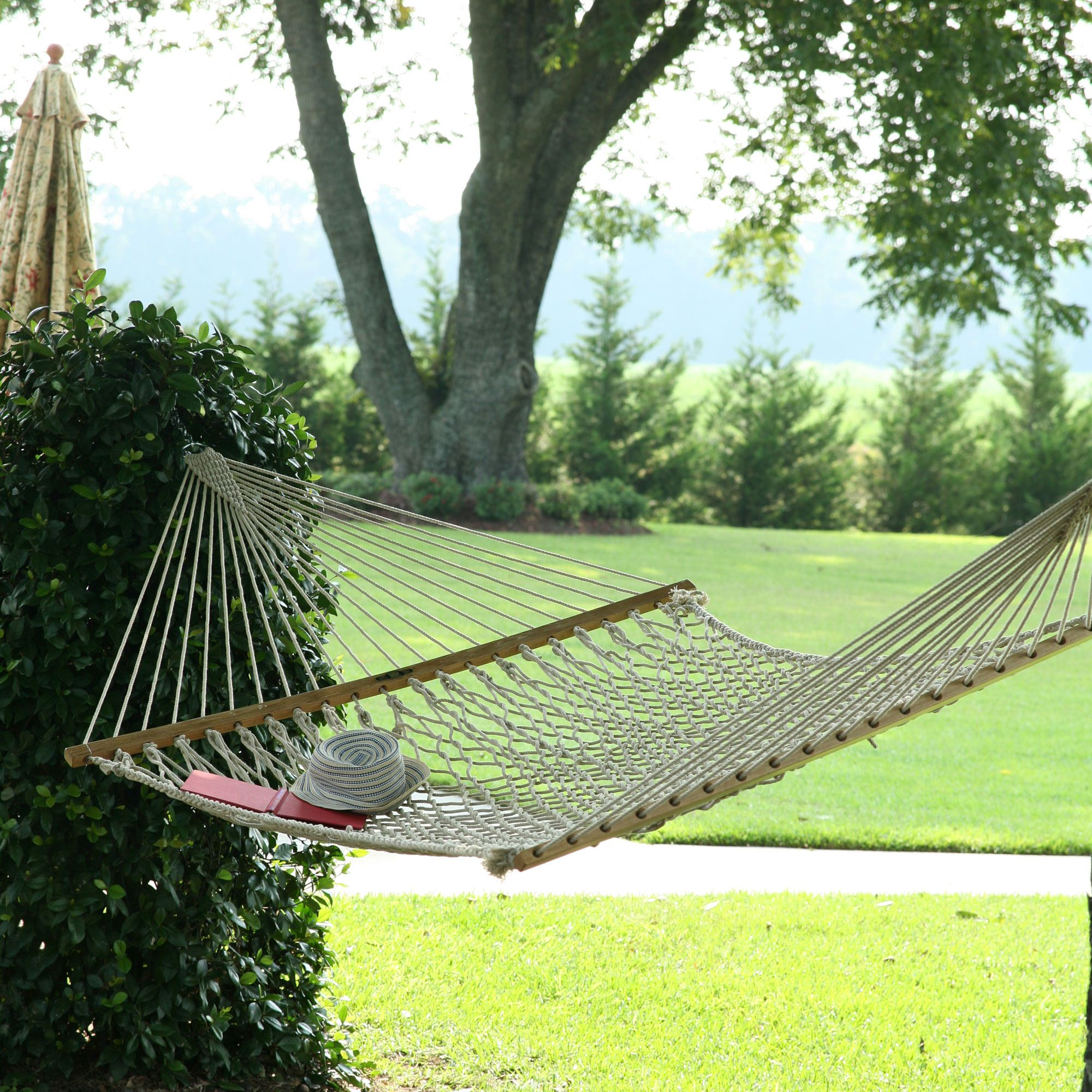 Original Pawleys Island Cotton Rope Hammock