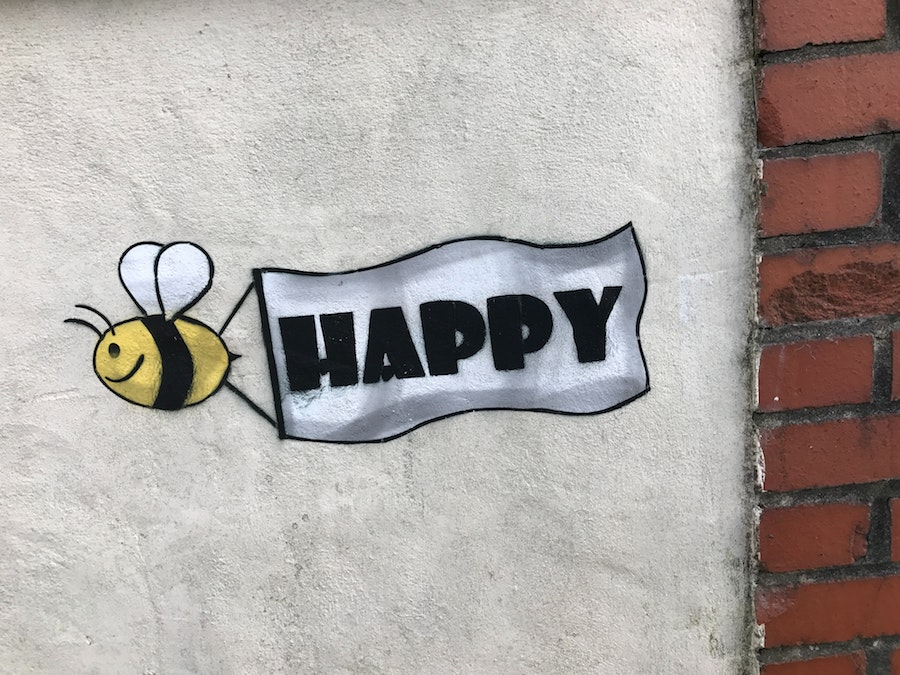 Drawing of bee flying a banner that reads 'HAPPY'. This is on a grey wall. On the right edge of the wall is a red brick wall. This photo to illustrate the happiness of Leena Munikempana at being certified as a master cat groomer