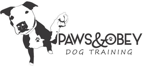 South Jersey Dog Training Behavior & Rehabilitation