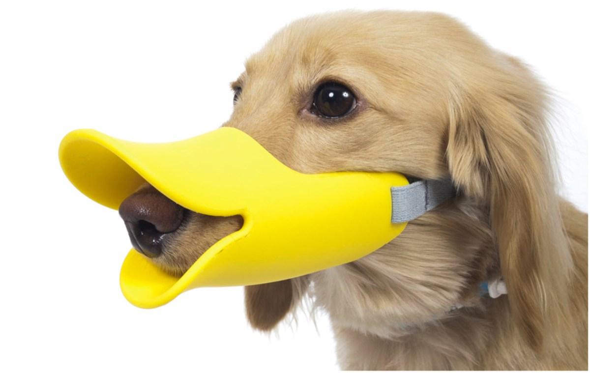 鴨咀口罩, 狗口罩, dog mask