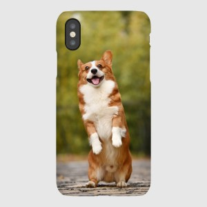 Lovely standing Corgi iPhone Case