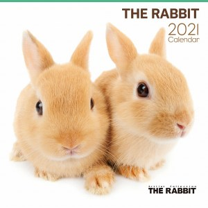 2021 Japan The Rabbit Calendar 日本兔子月曆