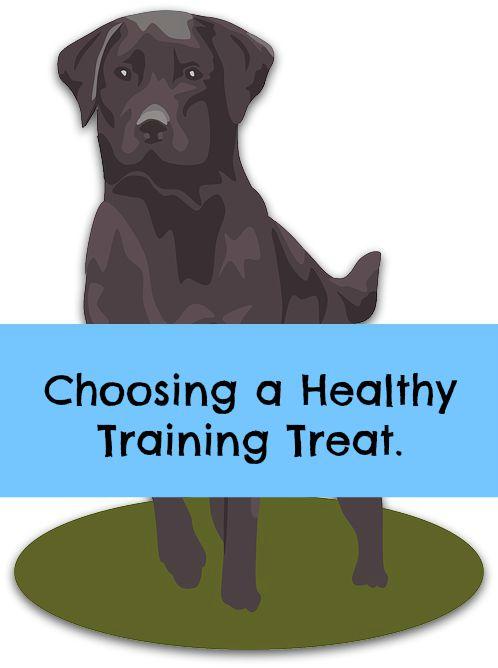 quality healthy dog training treat