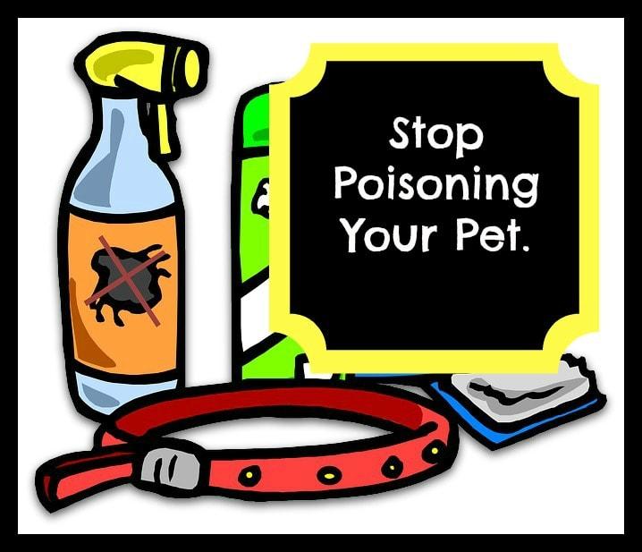 flea treatment dangers
