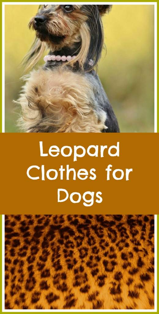 leopard clothes for dogs