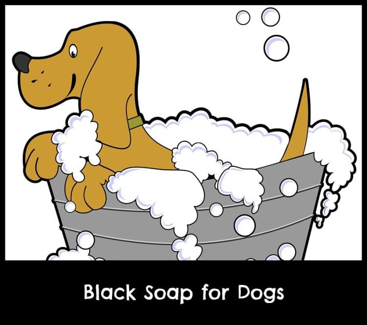 black soap for dogs