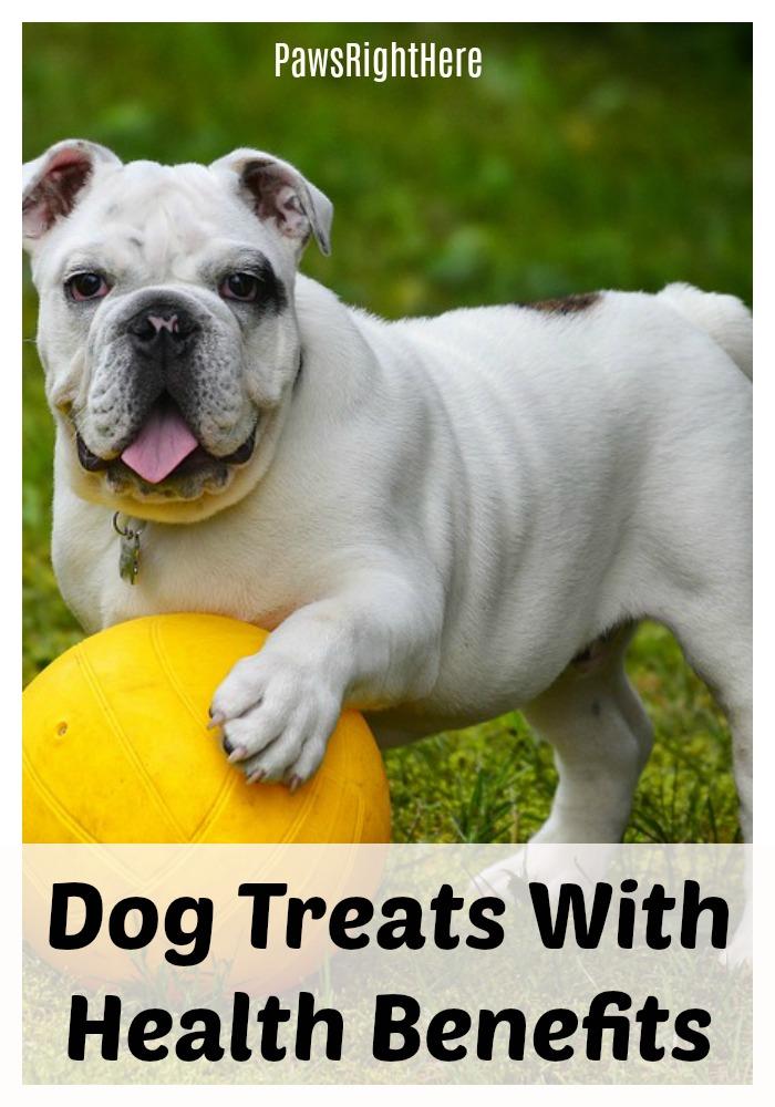 dog treats with health benefits
